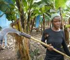 pic of women banana farmer